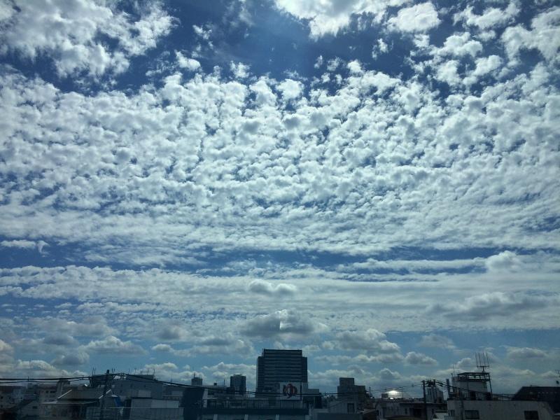 Blauer Himmel.jpg