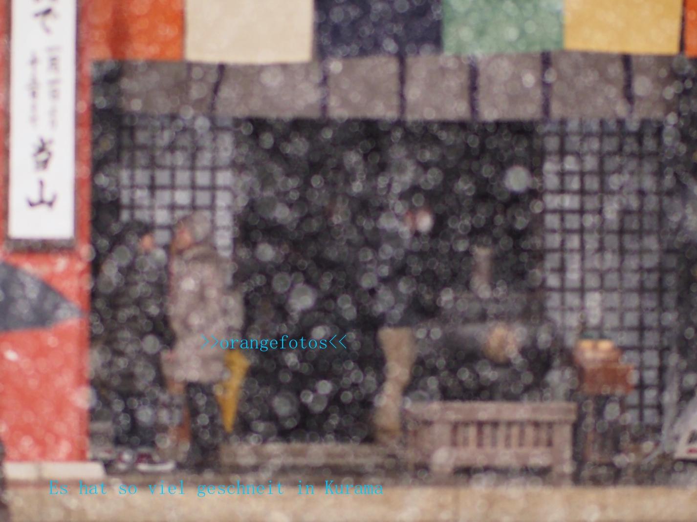 奥の院 im Schnee.jpg