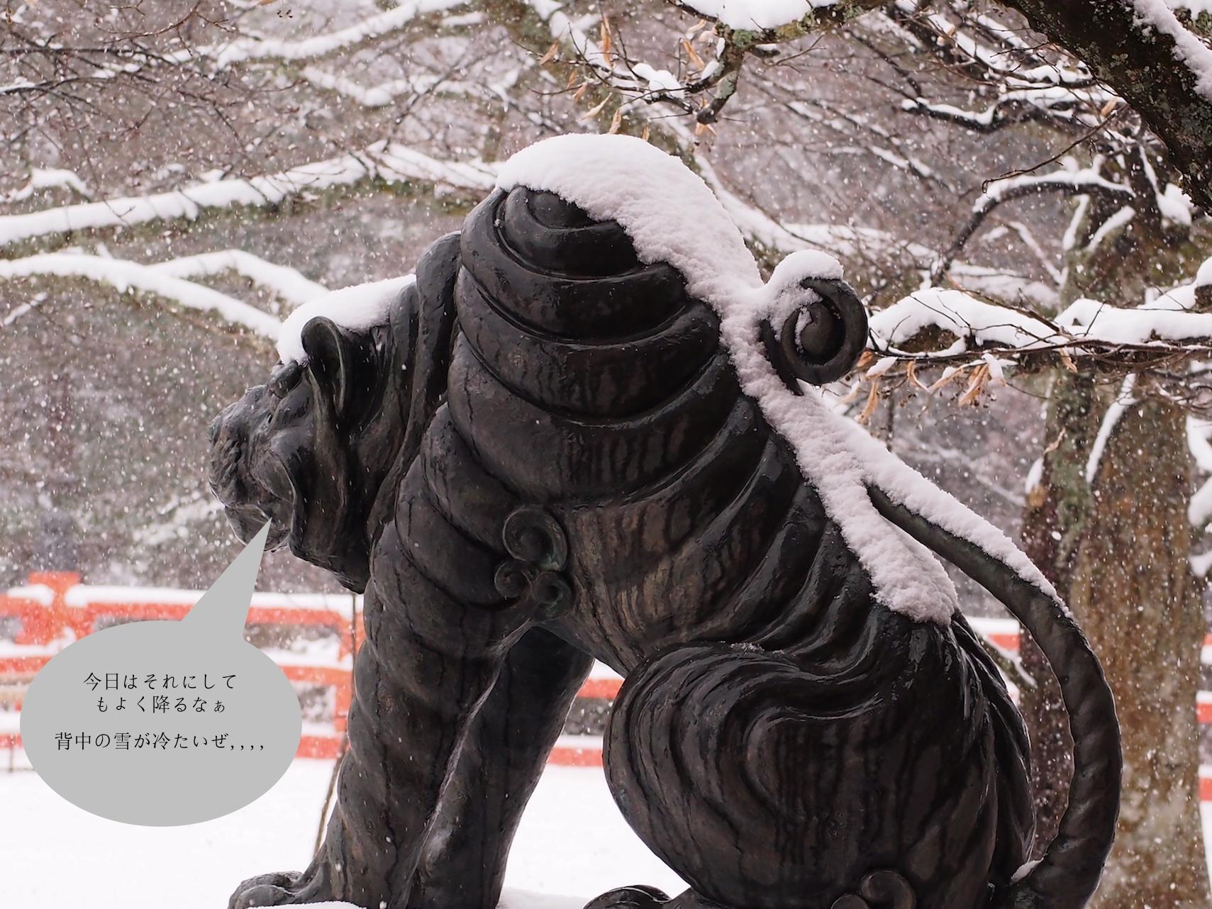 狛犬1.jpg