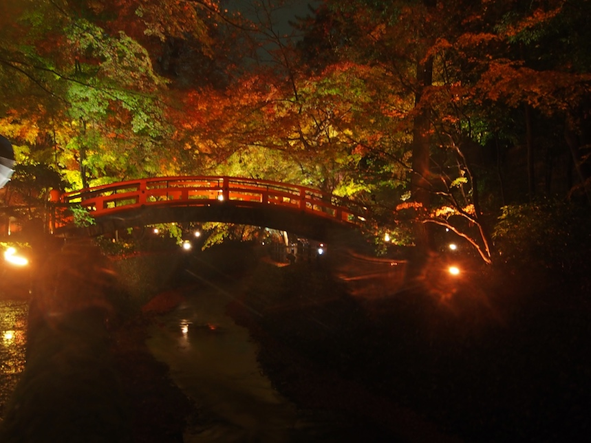 Holzbrücke Horizontal.jpg