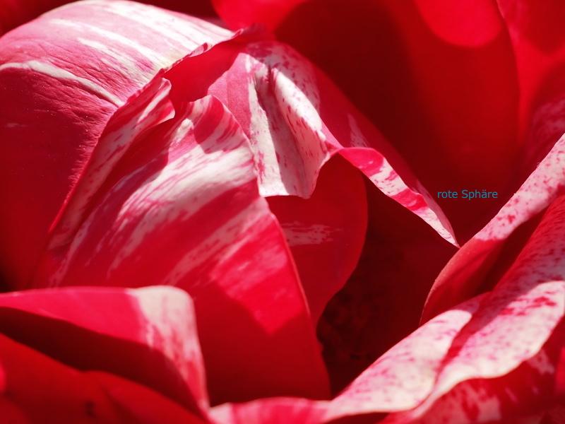 rote Sphäre.jpg